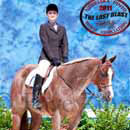 hunter undersaddle